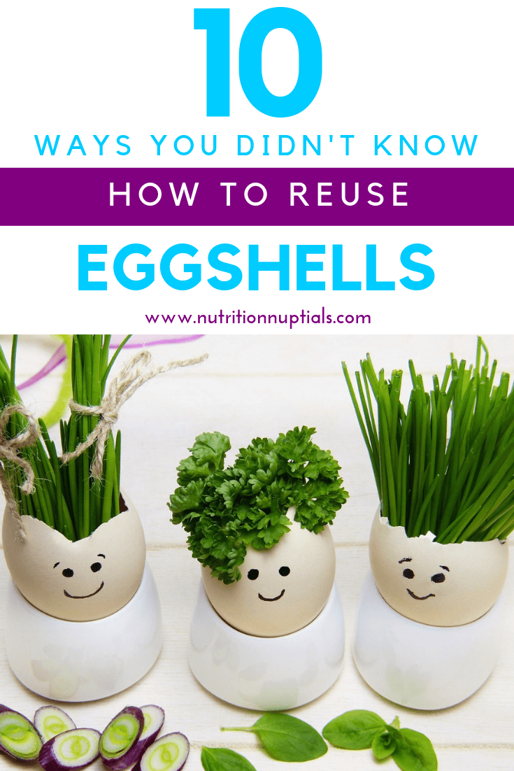 Uses for Eggshells | Easter Hardboiled Egg Leftovers | Nutrition Nuptials | Mandy Enright MS RDN RYT